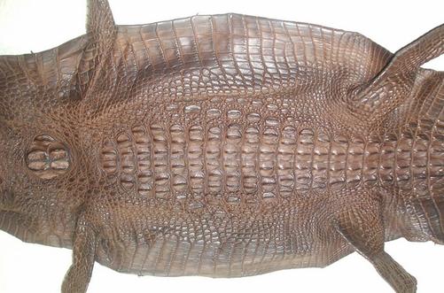 Cách phân biệt da cá sấu thật